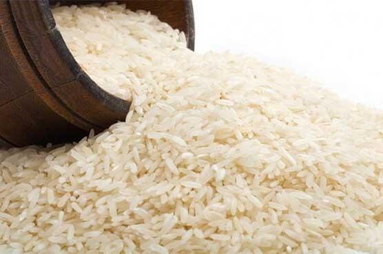 تفاوت برنج کشت اول با کشت دوم و راتن