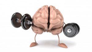 راهکارهای مطلوب برای تقویت حافظه