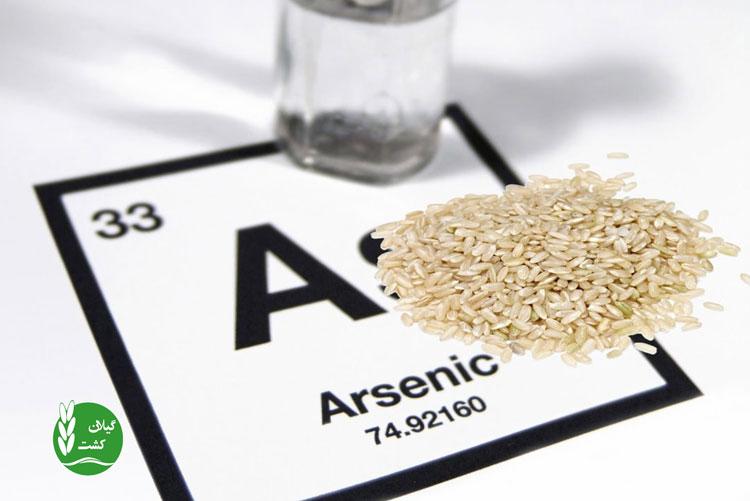سم آرسنیک برنج چیست؟