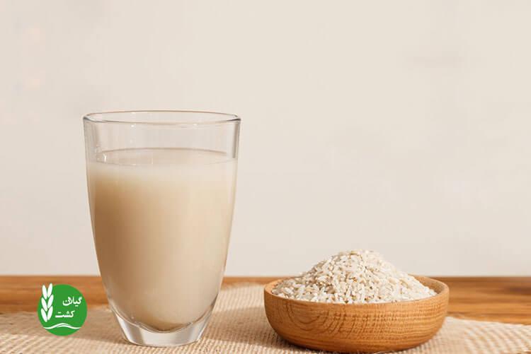 لعاب برنج چیست و چه خواصی برای کودکان دارد