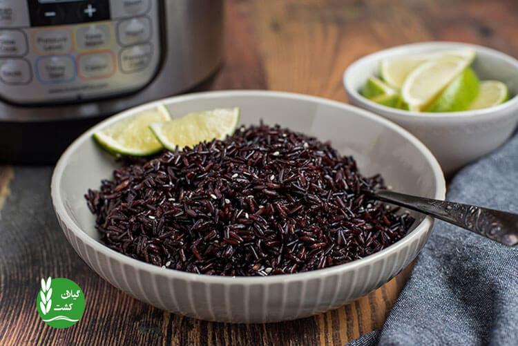 برنج سیاه چیست و چه خواصی دارد؟