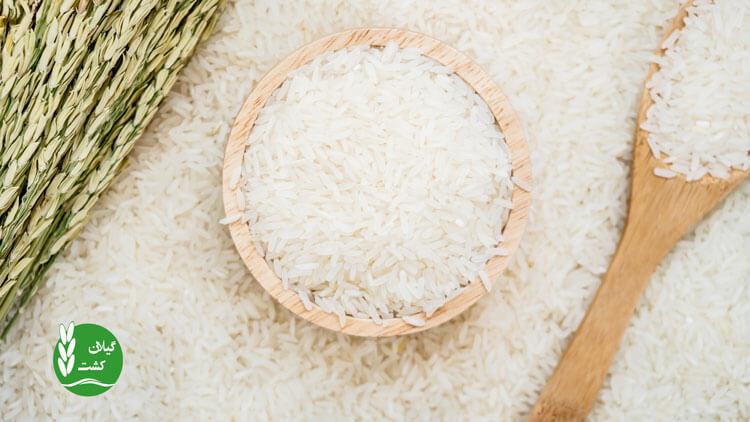 برنج بهترین کالای صادراتی ایران