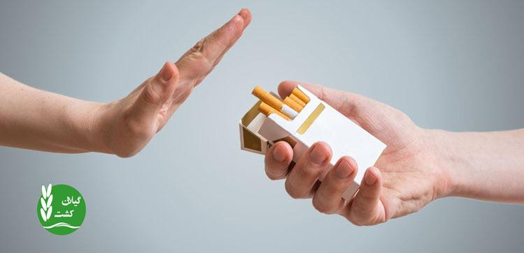 قطع دخانیات