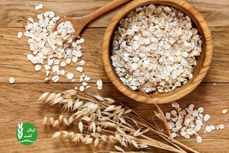 بررسی ویتامینها و مواد مفید سبوس برنج