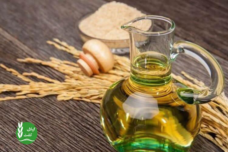 خواص درمانی روغن سبوس برنج